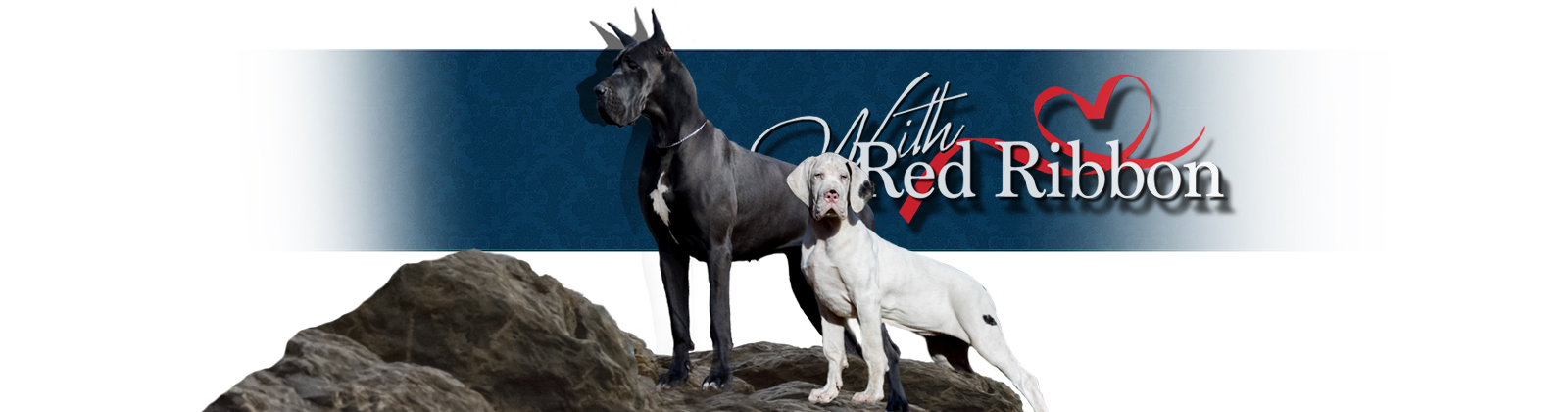 great danes kennel